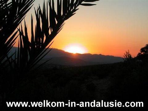 Vakantiewoning in andalusie te huur met prive zwembad for Vakantiehuisjes met prive zwembad